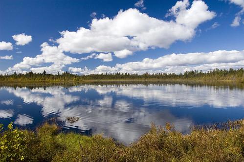 sky reflection nature clouds pond pondicherry wildliferefuge northcountry peatland photocontesttnc12
