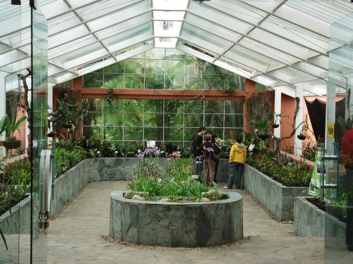 Greenhouse at the botanical gardens