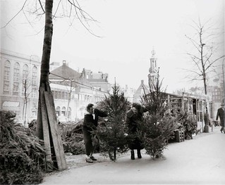 12-08-1958_15601 Kerstbomenverkoop