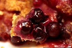huckleberries in a huckleberry plum pie