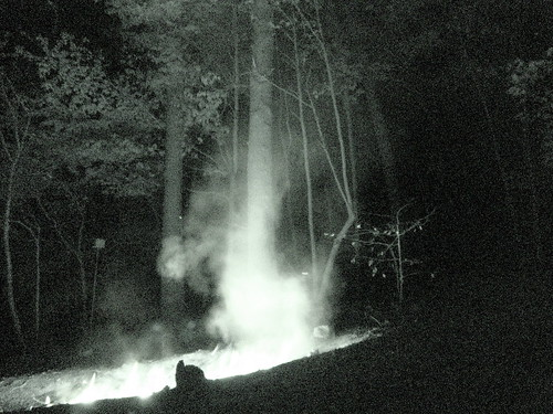 night fire firephotos kingstontn nightvisiondsch9woods nightvisionphotos roanecountytn