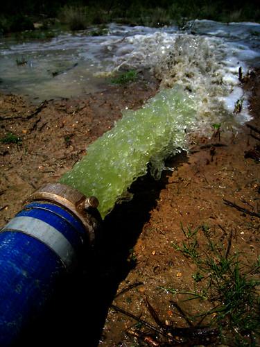 blue green toxic water moss stream dump hose pump algae waste gush toxicavenger stocktank canonpowershotsd870is