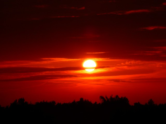 17193 sunset