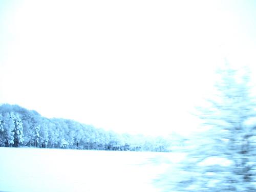 ~ winter dream ~