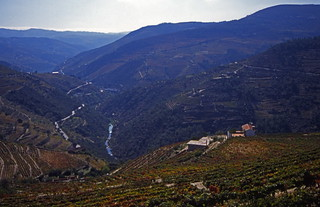 The Duro Valley
