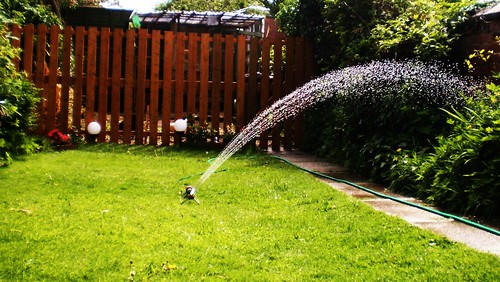 Watering lawn and garden in dry conditions