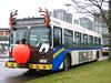 7184 (reindeer)