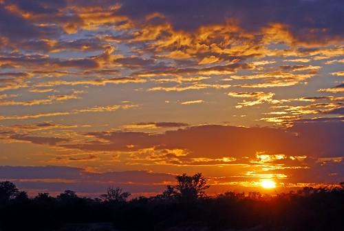 africa zambia luangwavalley lunagwavalley southlunagwanationalparkzambia normancarrsafaris
