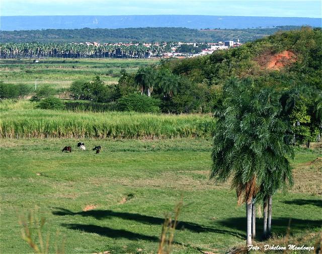 Crato - Paisagem Rural