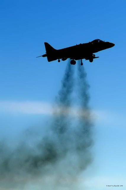 Harrier Silhouette