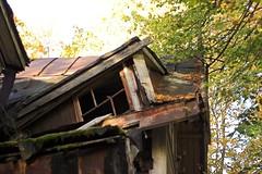 Makki's roof