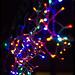 Small photo of electrify...