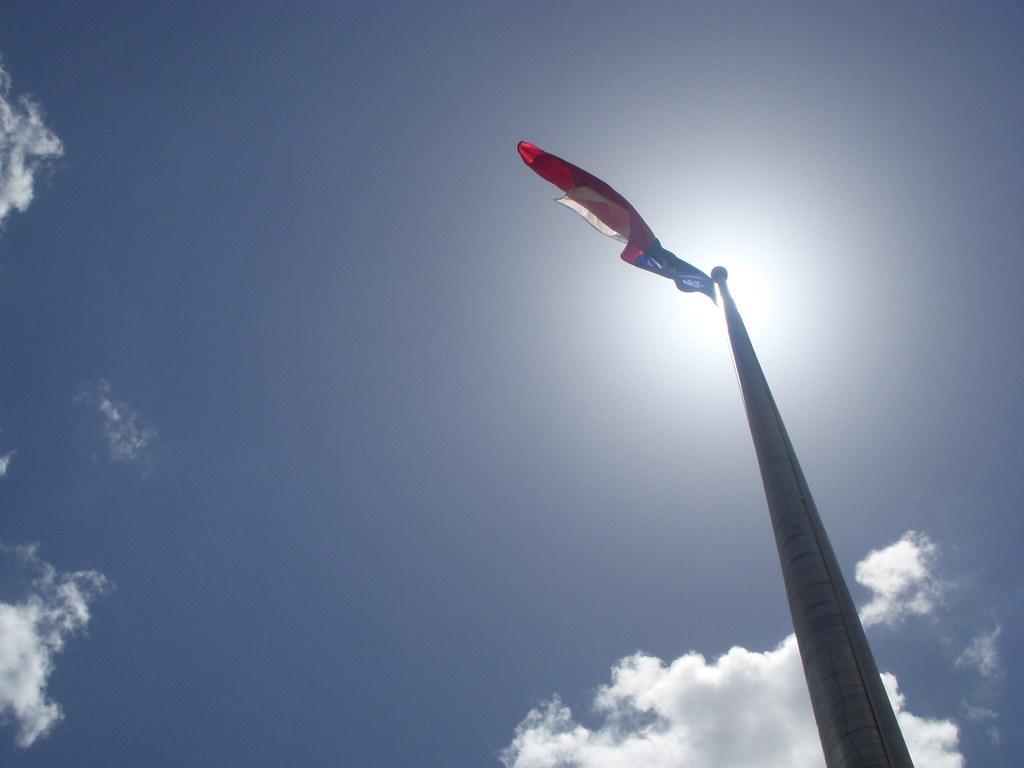Lone Star Flag