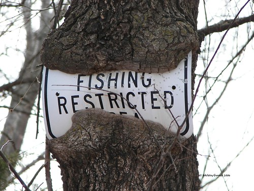 No Fishing.....