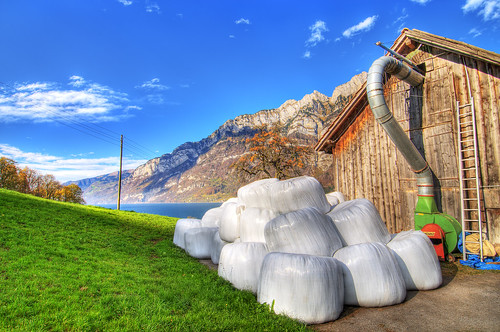 blue autumn trees sky white house lake mountains fall grass clouds barn switzerland nikon pipe wideangle plastic 12mm autumnal hdr packed haybales d300 walensee quarten photomatix hayballs
