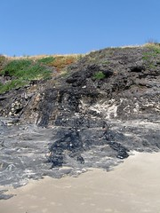tar sand at the beach, Carpenteria, CA