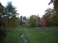 Finch Arboreum Creek