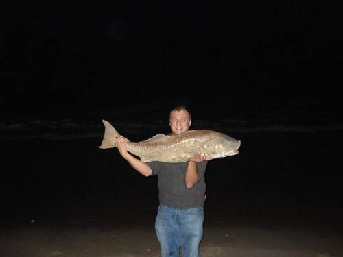 North carolina shark fishing blog archive red drum for Shark fishing nc