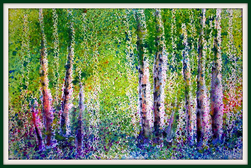 MYSTICAL BIRCH WOODS