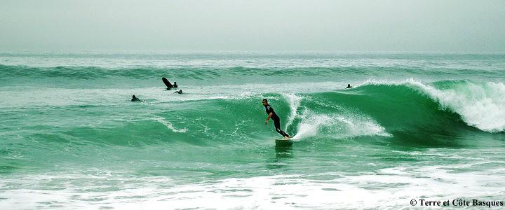 Surf à Hendaye © Terre et Côte Basques