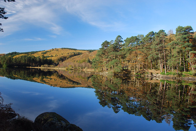 Loch Trool in November