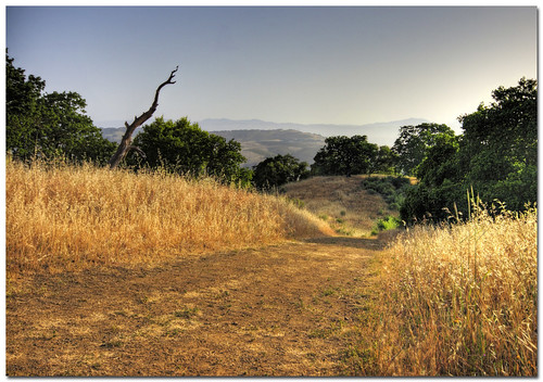 california park walk bwc hdr santaclaracounty almadenquicksilver sfchronicle96hrs dphdr beautifulworldchallenges