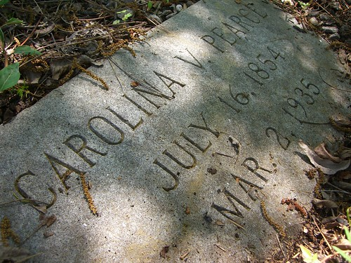 family history cemetery northcarolina genealogy pearce ancestry gupton louisburg joepearce doctorbuckoutlawpearce carolinavirginiagupton pearcecemetery