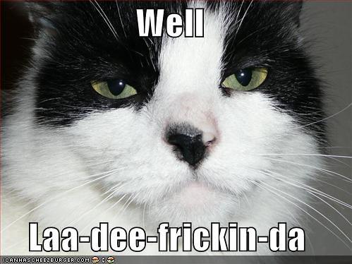 funny-pictures-unimpressed-cat