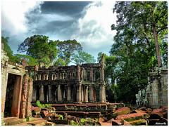 Preah Khan 寶劍塔(父廟)