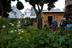 從國外開始實踐的樸門農藝(Brian Boucheron攝)
