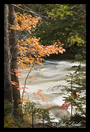autumn cornerbrook newfoundlandandlabrador westernnewfoundland cornerbrookstream