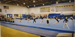 trampolining(0.0), floor gymnastics(1.0), sport venue(1.0), sports(1.0), room(1.0), gymnastics(1.0),