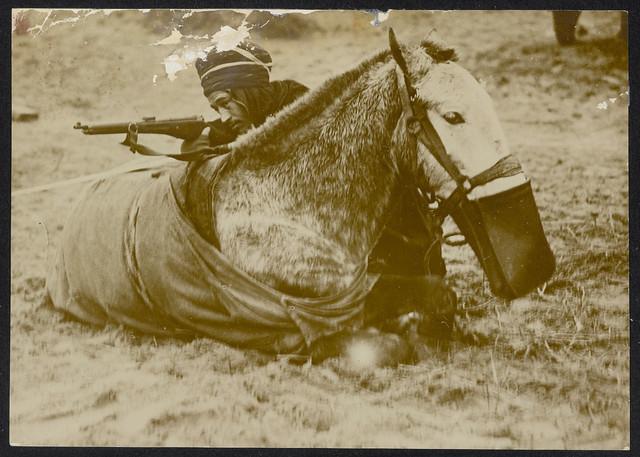 Soldaat met geweer die zich verschanst achter een liggend paard