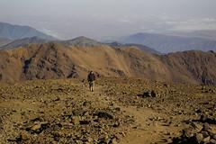 Nelter & Jebel Toubkal 2007/14 Morocco