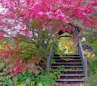 Colorful Entrance