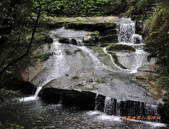 碧峰峡景区位于四川雅安市区北部16公里,碧峰峡生态,家园是由生态风景
