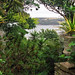 Lamorran House Gardens, Cornwall, UK | A Cornish coastal cliff garden with sea views (11 of 11)