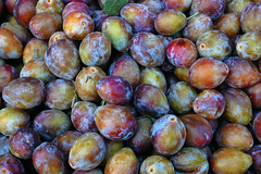 plum, damson, common fig, produce, fruit, food,