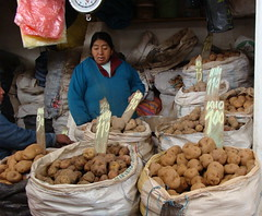 Cusco Central Market