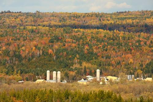 canada fall landscape farm nb newbrunswick keswick