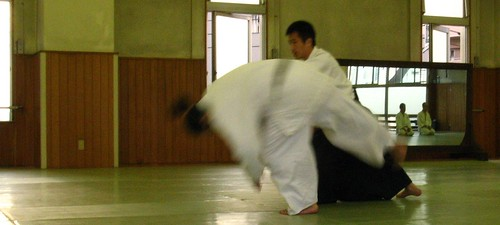 Aikido technique - cropped