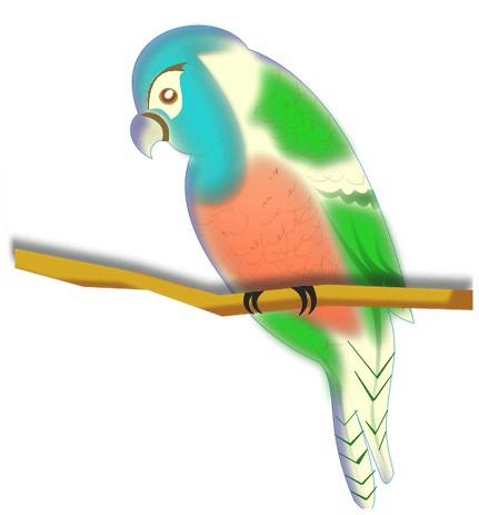 perico hoy fue el dia de dibujar aves primero dibuje unos colibries ...
