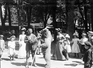 Ours, Luchon, septembre 1900