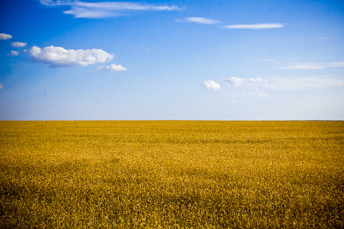 Ukraine. Flag colors