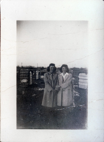 Gloria and Gladys in the pig pen
