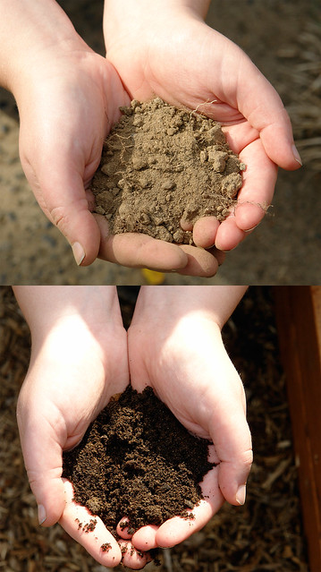 Dirt before and after