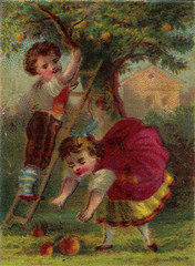 Boy and Girl Picking Fruit