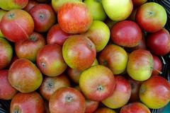 plant(0.0), nectarine(0.0), produce(1.0), fruit(1.0), food(1.0), myrciaria dubia(1.0), apple(1.0),