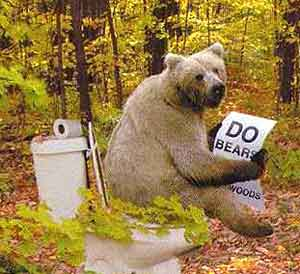 A bear sitting on the toilet in the woods