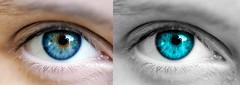 iris, contact lens, vision care, face, skin, head, macro photography, eyelash, green, eyelash extensions, close-up, eyebrow, blue, beauty, eye, organ,